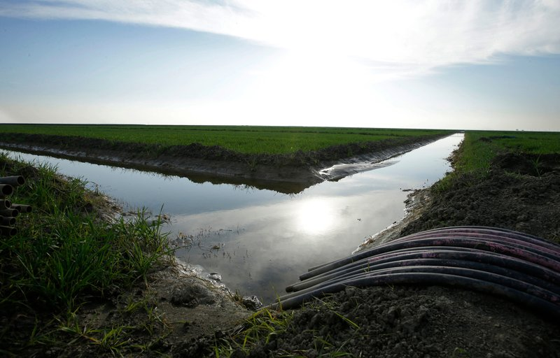 FILE - In this Feb. 25, 2016 file photo, water flows through an irrigation canal to crops near Lemoore, Calif. Voters will decide whether California borrows nearly $9 billion for water infrastructure projects in the state where its scarcity often pits city dwellers, farmers, anglers and environmentalists against one another. Proposition 3 on the ballot Tuesday, Nov. 6, 2018 would direct the money to storage and dam repairs, watershed and fisheries improvements, and habitat protection and restoration. (AP Photo/Rich Pedroncelli, File)