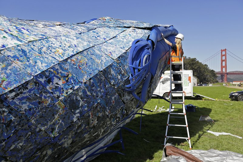 FILE - In this Oct. 12, 2018, file photo, project manager Meredith Winner looks over a blue whale art piece made from discarded single-use plastic being put together at Crissy Field in San Francisco. Artists were putting the finishing touches on the 82-foot-long (24-meter-long) blue whale made from discarded plastic that will be in display near San Francisco's Golden Gate Bridge to raise awareness about ocean pollution. (AP Photo/Eric Risberg, File)