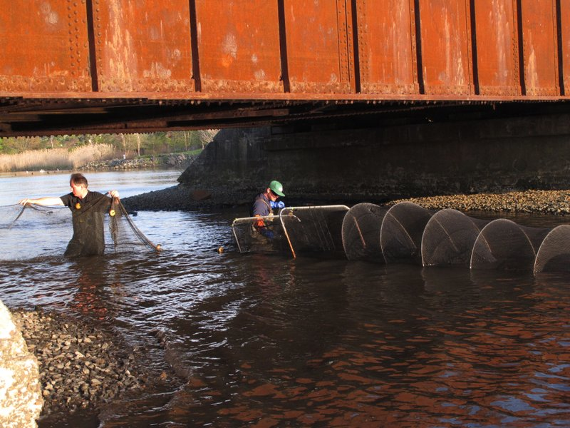 FILE - In this May 4, 2015, file photo, Pim Van Hemmen, left, and Al Modjeski, right, of the American Littoral Society environmental group, stretch large fish nets under a railroad overpass at Wreck Pond in Spring Lake, N.J. Billions of dollars have been spent on the recovery from Superstorm Sandy to help people get their lives back together, but a little-noticed portion of that effort is quietly helping another population along the shoreline: fish that need to migrate from coastal rivers out to the sea and back. (AP Photo/Wayne Parry, File)