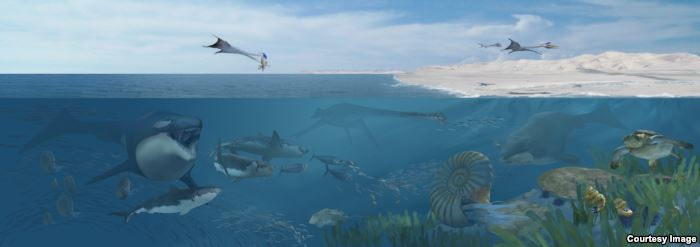 An artist's rendering of Angola's Cretaceous seas 72 million years ago, domin