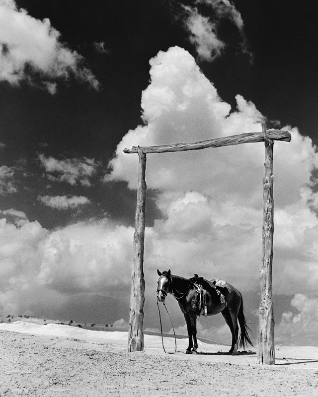 This photo courtesy of the Barry & Peggy Goldwater Foundation,  a Navajo pony stands near a trading post in photograph taken by Barry Goldwater in 1938 in Tonalea, Ariz. (AP Photo/Barry Goldwater/Courtesy of the Barry & Peggy Goldwater Foundation)
