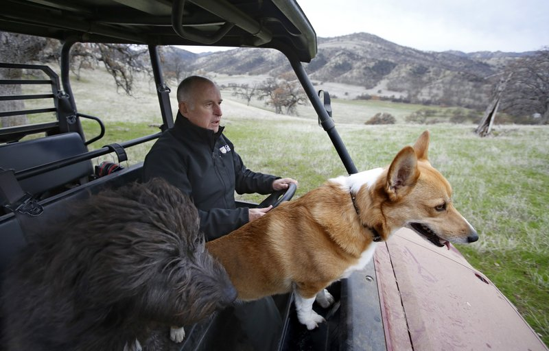 In this Saturday, Dec. 22, 2018, photo, Gov. Jerry Brown tours his Colusa County ranch accompanied by his dogs Cali, left, and Colusa near Williams, Calif. (AP Photo/Rich Pedroncelli)