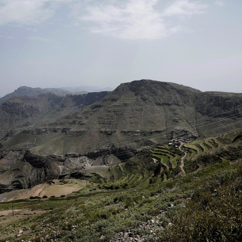 This Aug. 3, 2018 photo shows a green mountain landscape, where the terraces were planted with corn, barbary figs and qat, in Ibb, Yemen. (AP Photo/Nariman El-Mofty)
