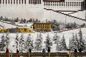 China 'resolutely opposes' new US law on Tibet