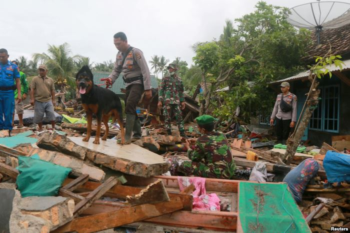 Rescue workers use a dog to search for victims, Dec. 25, 2018, among debris s