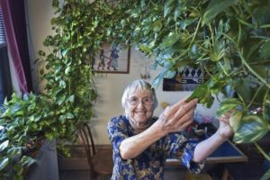 Dying woman seeks caregiver for beloved 15-foot-long plant