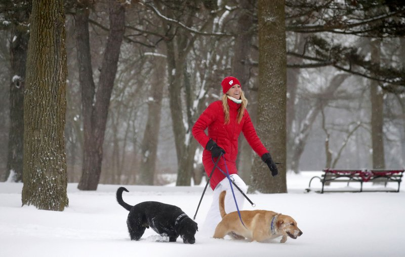 Mary Becker walks her dogs, Reggie, and Archie, at Lake Park near her home in Milwaukee on Monday, Jan. (Mike De Sisti/Milwaukee Journal-Sentinel via AP)