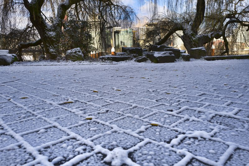 Downtown Portland is seen behind a row of trees and a snow covered pedestrian walkway along the Willamette river in Portland, Ore. (AP Photo/Richard Vogel)