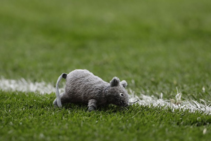 A stuffed mouse lies on the pitch after being thrown by a fan during a Spanish La Liga soccer match between Atletico Madrid and Real Madrid at the Metropolitano stadium in Madrid, Spain, Saturday, Feb. (AP Photo/Manu Fernandez)