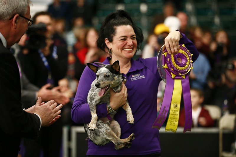 THIS CORRECTS THE LAST NAME TO TOPOL AND NOT TOOL AS ORIGINALLY SENT - Lisa Topol displays her ribbon after winning in the masters agility championship with her dog