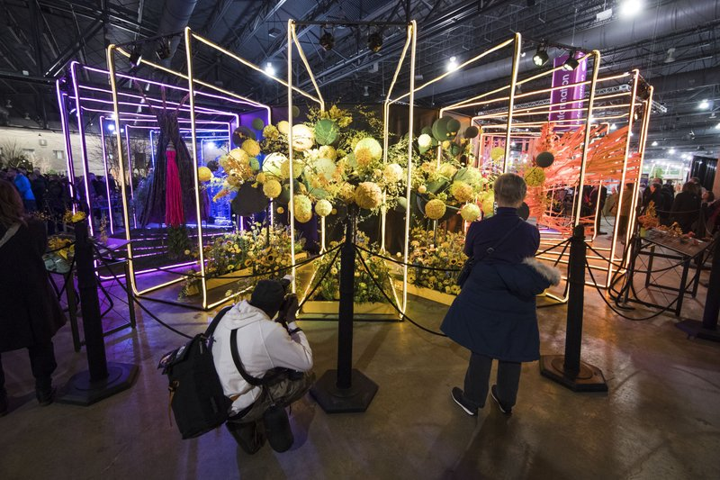 Visitors view an instillation during a preview of the