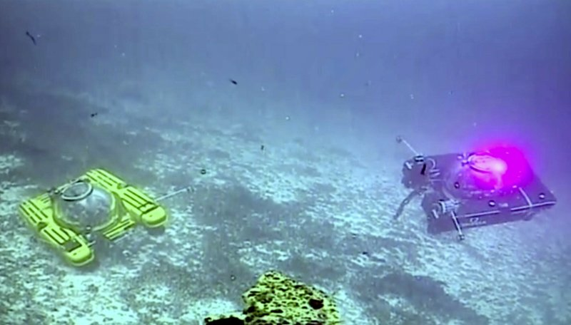 An image taken from video issued by Nekton shows two submersibles from the vessel the Ocean Zephyr during a descent into the Indian Ocean off Alphonse Atoll near the Seychelles, Tuesday March 12, 2019. (Nekton via AP)