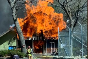 Animals killed in fire at California reptile museum