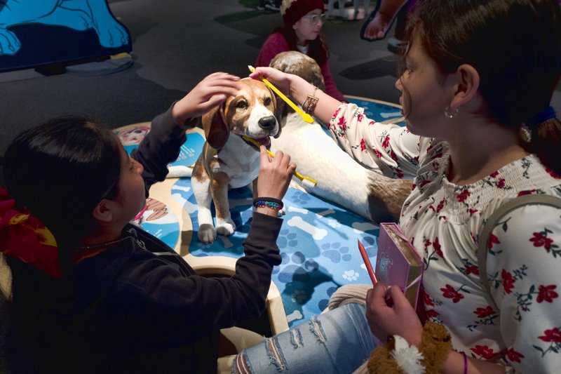 In this Tuesday, March 12, 2019 photo students from the Theodore T. Alexander Science Center School practice brushing dog's teeth at an interactive display during a preview of an exhibition called