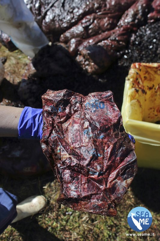 This photo taken on Saturday March 30, 2019 provided by SEAME Sardinia Onlus, shows plastic recovered from the belly of a whale, in Porto Cervo, Sardinia island, Italy. (48.5 pounds) of plastic found in its belly. The environmental organization said Monday that the garbage recovered in the sperm whale's stomach included a corrugated tube for electrical works, plastic plates, shopping bags, tangled fishing lines and a washing detergent package with the brand and bar code still legible. The female whale beached off the northern coast of Sardinia last week. (SEAME Sardinia Onlus via AP)