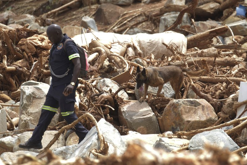 A South African Policeman guides his sniffer dog as they search through mud and rubble for bodies of those killed during Cyclone Idai near Chimanimani, Zimbabwe, Thursday, March 28, 2019. (AP Photo/Shepherd Tozvireva)