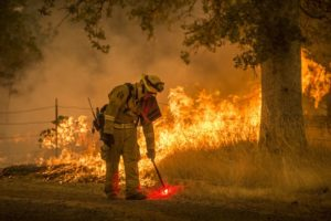 California fire risk shows urgent need for prevention work