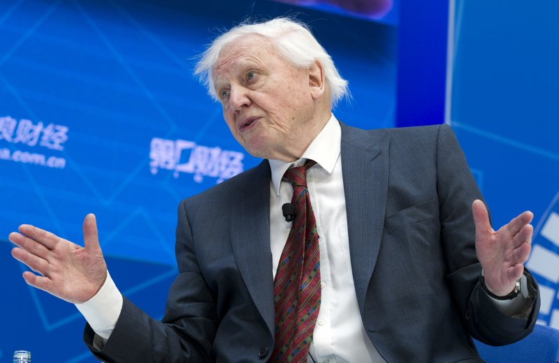 Broadcaster and naturalist Sir David Attenborough speaks during One-on-One talk Balancing Nature and the Global Economy, at the World Bank/IMF Spring Meetings in Washington, Thursday, April 11, 2019. (AP Photo/Jose Luis Magana)