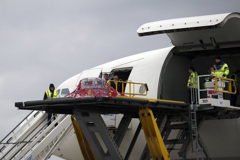 Airport workers unload a transporter with a griffon vulture, named Dobrila from a plane upon its arrival at Belgrade airport, Serbia, Friday, April 12, 2019. (AP Photo/Darko Vojinovic)