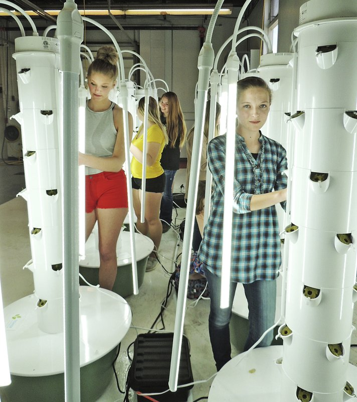 In between the LED lights are FFA students, clockwise from left, Jaimee Randel, Whitney Knotts, Kayla Martin, Martika McKain, Kacy Anderson and ElsiAnna Rodewald, March 27, 2019. (Lorri Sughroue/McCook Gazette via AP)