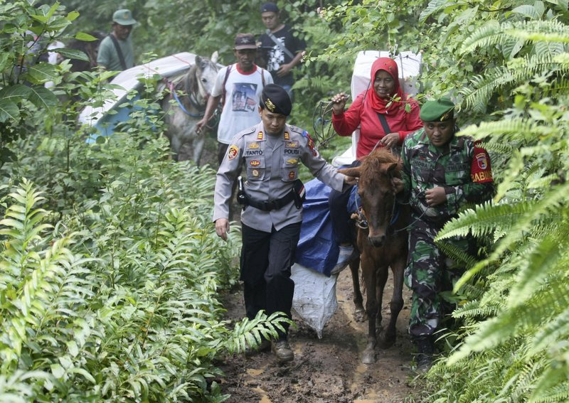 Police officers and soldiers escort electoral workers using horses to distribute ballot boxes and other election paraphernalia to polling stations in remote villages in Tempurejo, East Java, Indonesia, Monday, April 15, 2019. (AP Photo/Trisnadi)