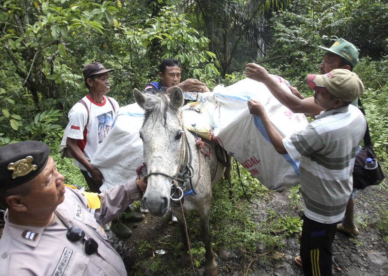 Workers load ballot boxes and other election paraphernalia onto a horse as they prepare to distribute them to polling stations in neighboring remote villages in Tempurejo, East Java, Indonesia, Monday, April 15, 2019. (AP Photo/Trisnadi)
