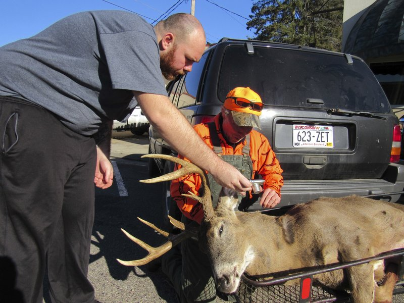 FILE - In this Nov. 21, 2016, file photo, Daniel Crook, right, looks at a photo Dan Ruhland took of Crook's nine point deer in downtown Plain, Wis. (Barry Adams/Wisconsin State Journal via AP, File)