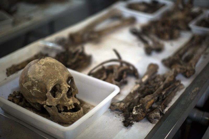 In this Tuesday, Aug. 28, 2018 photo, a skull with other bones of a victim's bodies during the classification process by anthropologists following the exhumation of a mass grave at the cemetery of Paterna, near Valencia, Spain. (AP Photo/Emilio Morenatti)