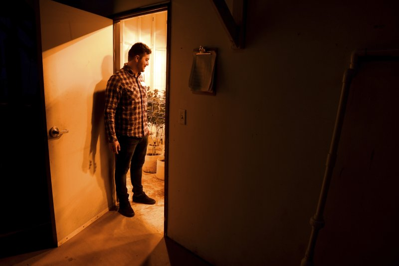 FILE - In this April 3, 2019, file photo, Oswaldo Barrientos stands in the doorway of a grow room at the marijuana facility where he works near downtown Denver. (AP Photo/Thomas Peipert, File)