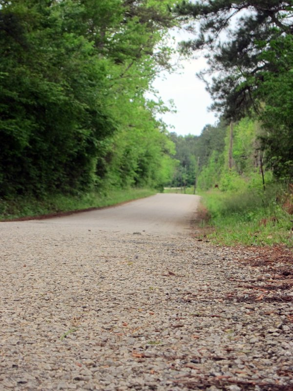 This April 12, 2019, photo shows a section of Huff Creek Road in Jasper, Texas, where James Byrd Jr., who was black, was dragged to death by three white men in what is considered one of the most gruesome hate crime murders in recent Texas history. (AP Photo/Juan Lozano)