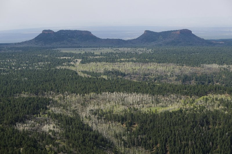 FILE - This Dec. 28, 2016, file photo shows the two buttes that make up the namesake for Utah's Bears Ears National Monument in southeastern Utah. (Francisco Kjolseth/The Salt Lake Tribune via AP, File)