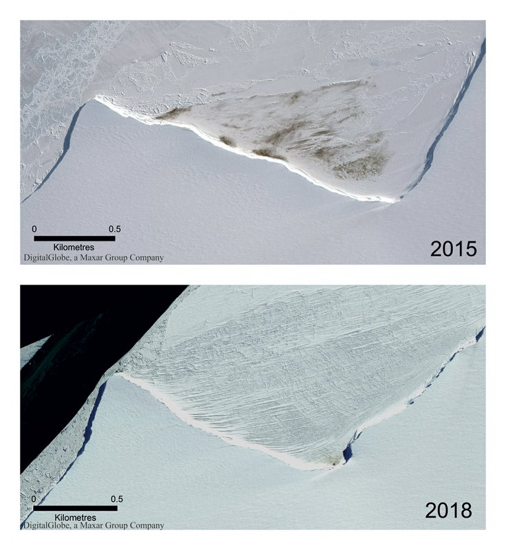This combination of satellite photos provided by Maxar Technologies via the British Antarctic Survey shows the site of the Halley Bay emperor penguin colony in 2015 and 2018. (Maxar Technologies/British Antarctic Survey via AP) Satellite Images ©2019 Maxar Technologies