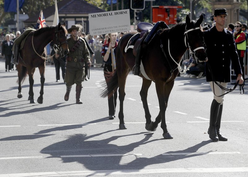 Riderless horses symbolizing fallen soldiers take part in a march celebrating ANZAC Day, a national day of remembrance in Australia and New Zealand that commemorates those that served and died in all wars, conflicts, and while peacekeeping, in Sydney, Australia, Thursday, April 25, 2019. (AP Photo/Rick Rycroft)