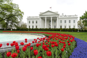 White House Spring Garden Tour—in pictures