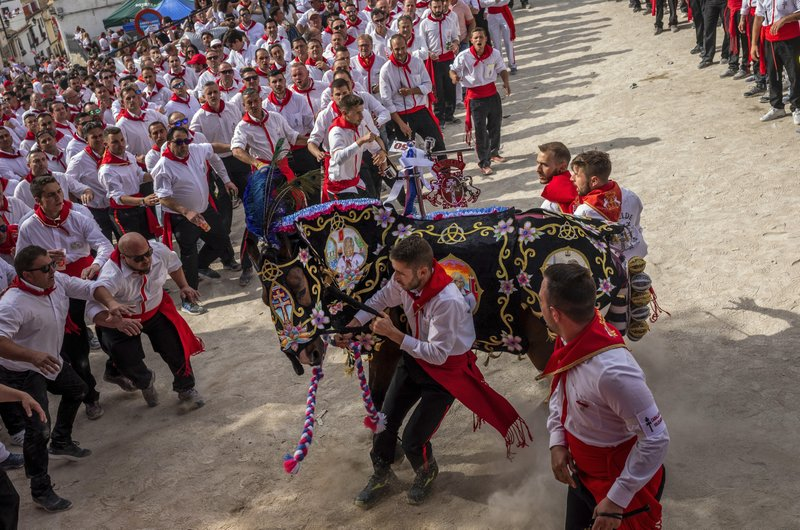 In this Thursday, May 2, 2019 photo, a troupe try to control their richly decorated horse during the