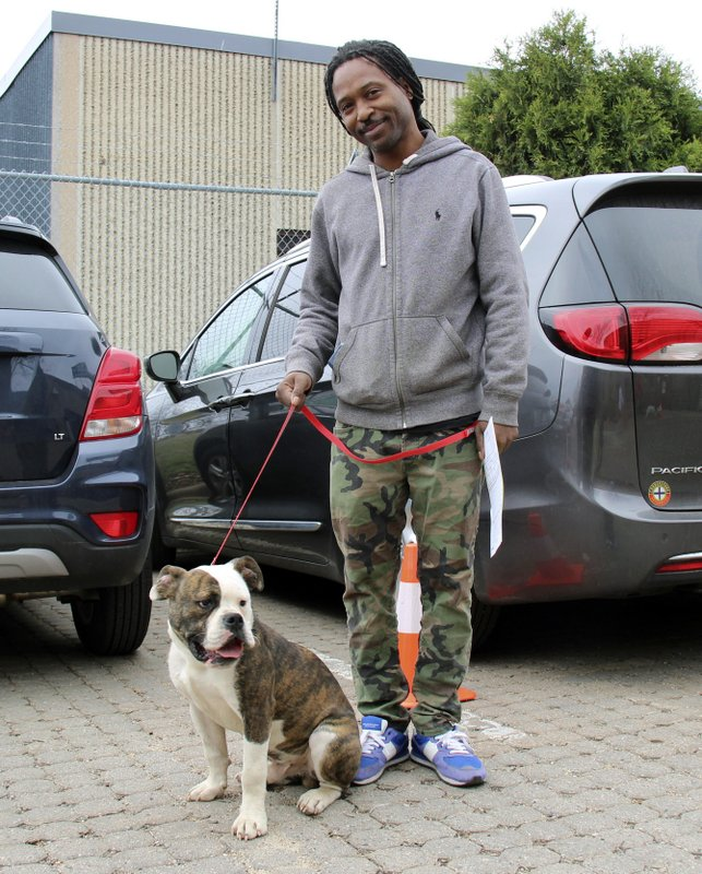 In this Sunday, April 28, 2019 photo, Ausar Lovestar and his Olde English bulldog, Horace, wait in line to get Horace vaccinated at the Minneapolis Animal Care and Control low-cost vaccination clinic. (Peter Cox/Minnesota Public Radio via AP)