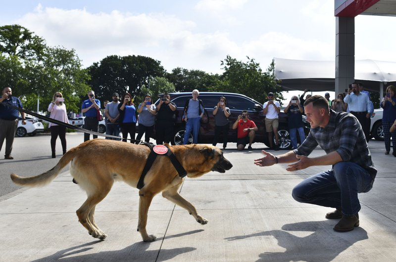 In an April 5, 2019 photo, former Marine Aaron Stice is reunited with Kkeaton, his canine partner when he was a police officer patrolling Camp Pendleton, Calif. (Billy Calzada/The San Antonio Express-News via AP)