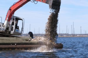 Illness fears thwart NJ oyster colonies that would aid water