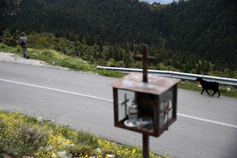 In this Tuesday, May 14, 2019, photo a shepherd walks in Kerasohori village at Evrytania region, in central Greece. The area, a winding, three-hour drive from Athens, has the oldest population in the whole European Union, 54.3 on average. (AP Photo/Thanassis Stavrakis)