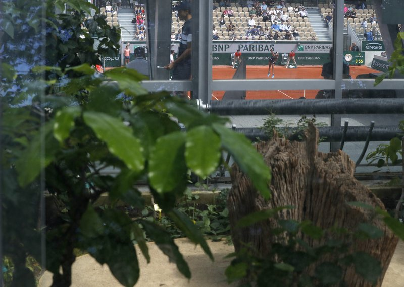 Tropical plants in the greenhouses that surround the new Simonne Mathieu court are seen as Spain's Garbine Muguruza serves against Taylor Townsend of the U.S. during their first round matches of the French Open tennis tournament at the Roland Garros stadium in Paris, Sunday, May 26, 2019. (AP Photo/Pavel Golovkin)