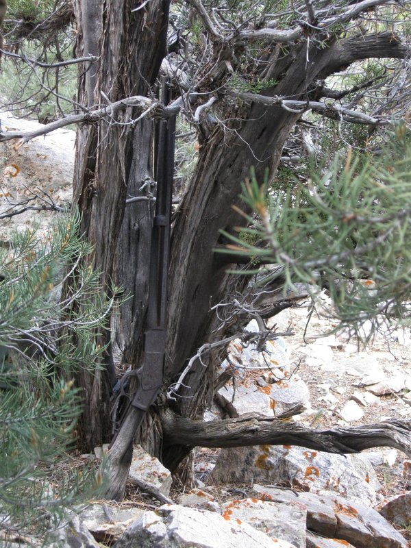 FILE - This image provided by the Great Basin National Park shows a Winchester Model 1873 rifle found in Nevada. The gun made in 1882 was found propped against a juniper tree in Great Basin National Park in November during an archaeological survey. rifle discovered five years ago leaning against a juniper tree at Great Basin National Park has a new home in an exhibit dedicated to the