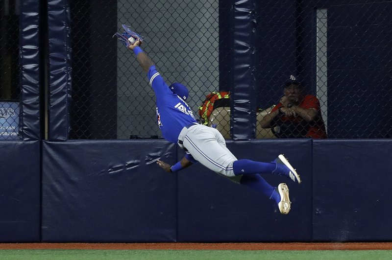 Toronto Blue Jays center fielder Jonathan Davis makes a diving catch on a flyout by Tampa Bay Rays' Avisail Garcia during the first inning of a baseball game Wednesday, May 29, 2019, in St. Petersburg, Fla. (AP Photo/Chris O'Meara)