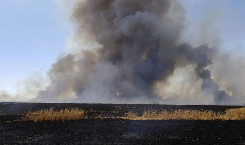 This Tuesday, May 28, 2019 photo, provided by the community service group, Together for Jarniyah, which has been authenticated based on its contents and other AP reporting, shows Syrians working to extinguish a fire in a field of crops, in Jaabar, Raqqa province, Syria. Crop fires in parts of Syria and Iraq have been blamed on defeated Islamic State group militants in the east seeking to avenge the group's losses, and on Syrian government forces in the west battling to rout other armed groups there. (Together for Jarniyah via AP)
