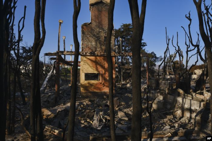 Burned trees surround a destroyed home leaving only the fireplace in Point Du