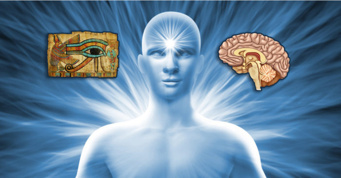 The pineal gland or 'The third eye'