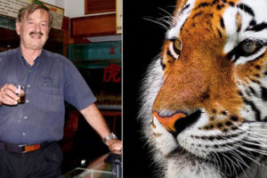 Meet the risk-taking conservationist who is exposing the world's illegal tiger farms