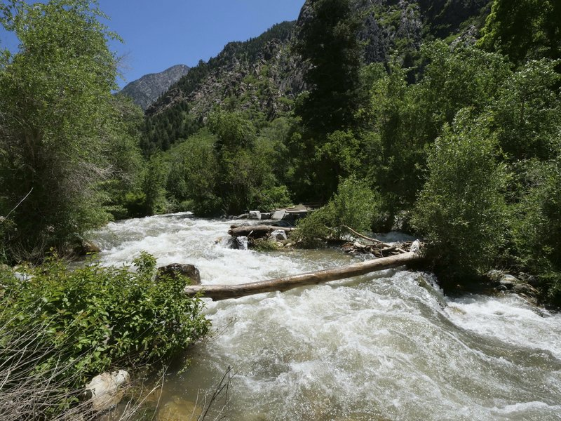 This Monday, June 10, 2019, photo shows the Big Cottonwood Creek, in the Big Cottonwood canyon, near Salt Lake City. The summer's melting snowpack is creating raging rivers that are running high, fast and icy cold. The state's snowpack this winter was about 150 percent higher than the historical average and double the previous year, which was the driest on record dating back to 1874, said Brian McInerney, hydrologist for the National Weather Service in Salt Lake City. Large parts of the Salt Lake City metro area sits near the foothills of the towering Wasatch Range. (AP Photo/Rick Bowmer)