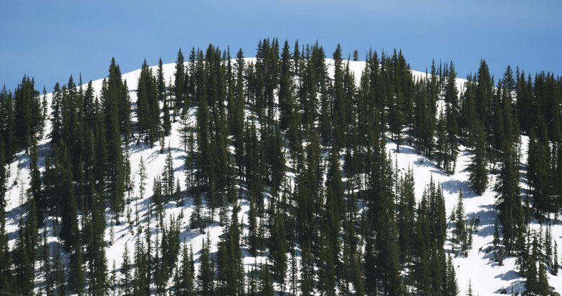 This Tuesday, June 11, 2019, photo shows snow covering a mountain in the Wasatch Range near Salt Lake City. The summer's melting snowpack is creating raging rivers that are running high, fast and icy cold. The state's snowpack this winter was about 150 percent higher than the historical average and double the previous year, which was the driest on record dating back to 1874, said Brian McInerney, hydrologist for the National Weather Service in Salt Lake City. About twice as much snow remains on the mountain peaks as normal because cold and wet conditions in late May added to snowpack. (AP Photo/Rick Bowmer)