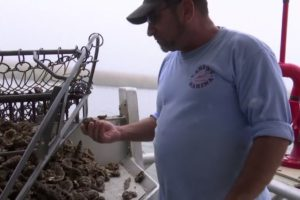Beyond rivers, Midwestern floodwaters hurt seafood catches