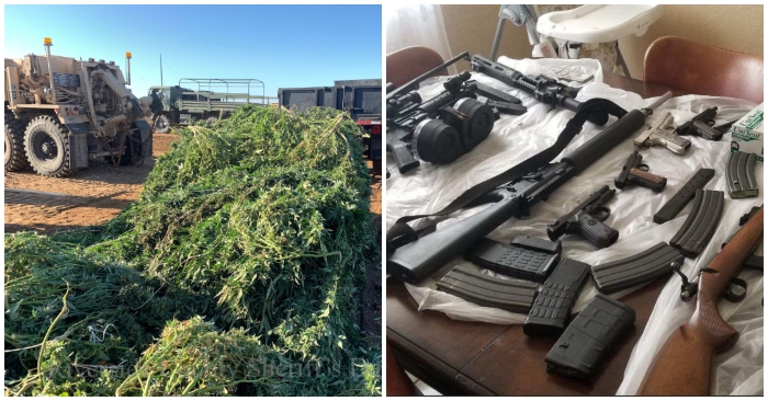 14 9 tons of pot, 37 firearms seized in Perris drug bust by